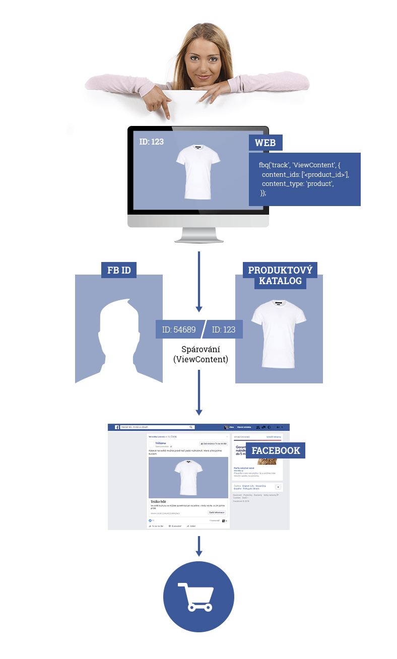 nf-infografika02
